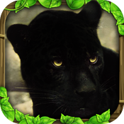 Download Panther Simulator free for iPhone, iPod and iPad