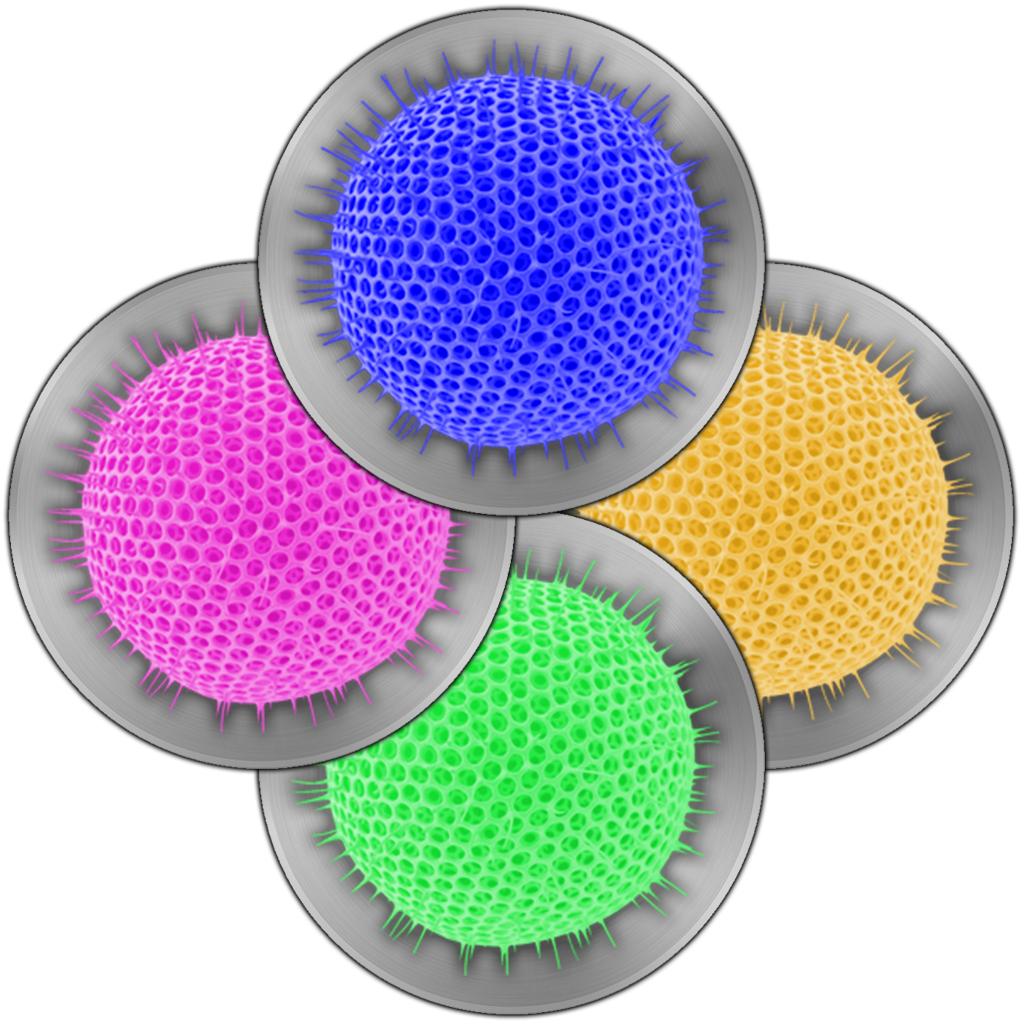 Four Viruses